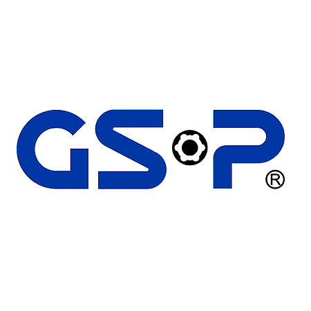 GSP AUTOMOTIVE GROUP CO. LTD
